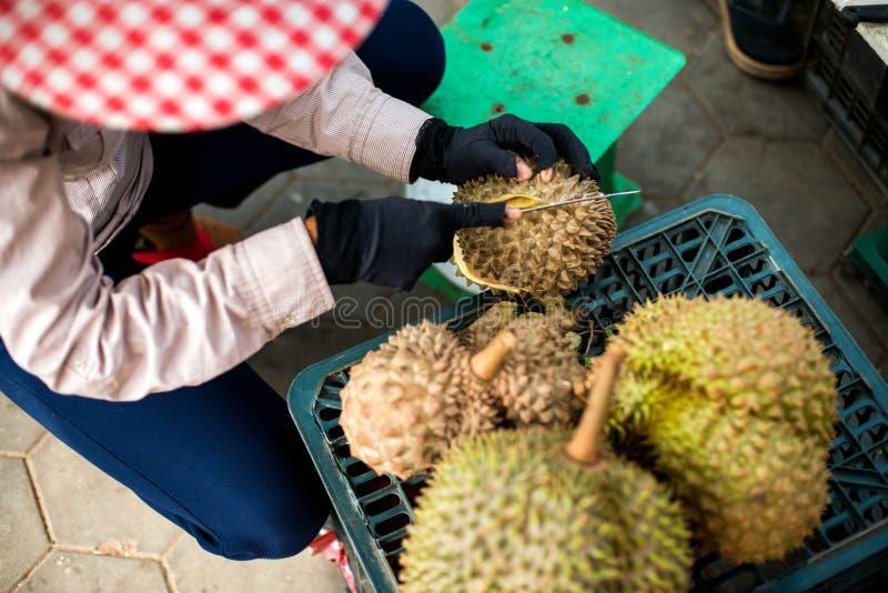 热带留连果果子查出的照片 库存图片