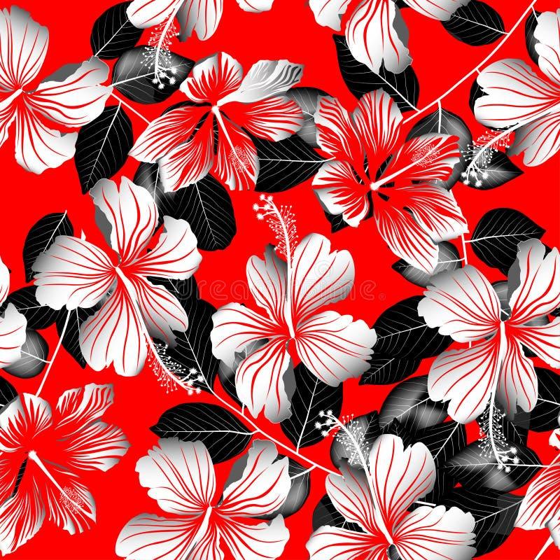 热带白色木槿开花与黑叶子无缝的patte 皇族释放例证