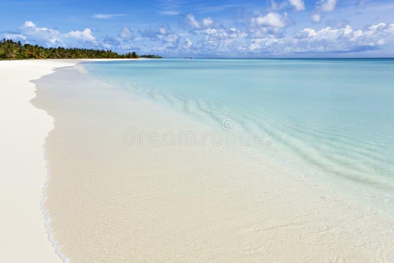 热带白色沙子海滩 免版税库存图片