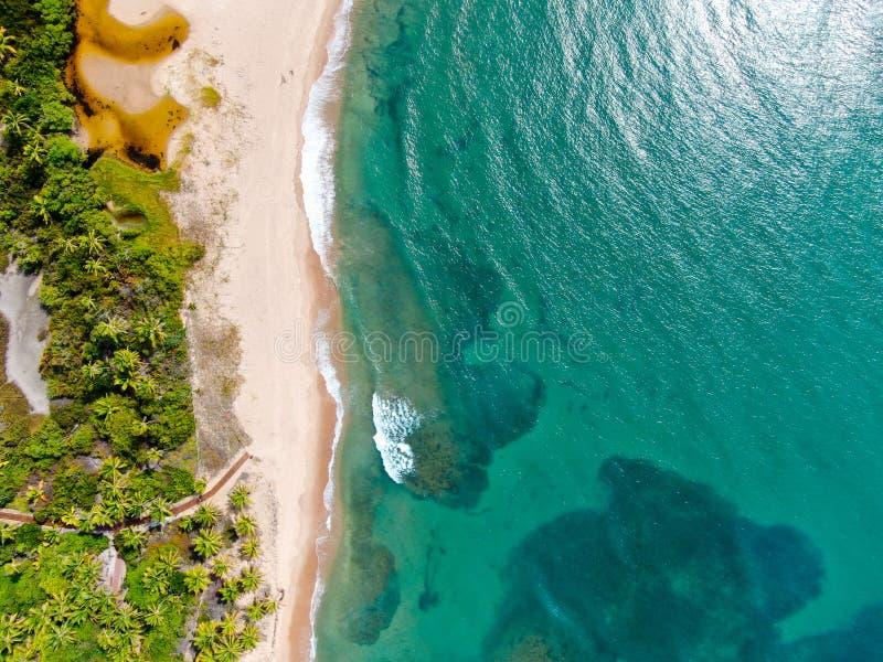 热带白色沙滩和绿松石明白海水空中顶视图与小波浪和棕榈树背景的 库存图片