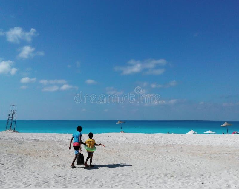 热带白色铺沙的海滩在埃及 免版税库存照片