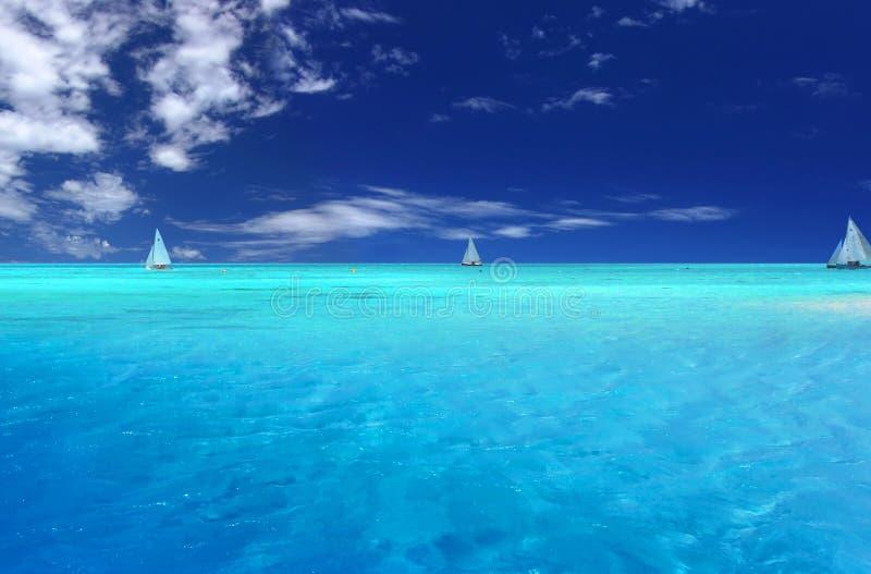 热带的乐趣 图库摄影