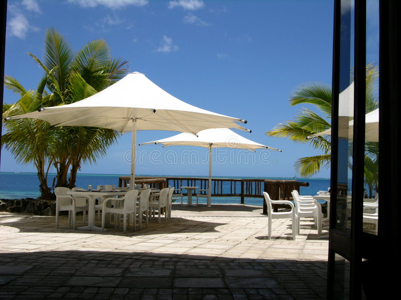 热带的午餐时间 库存图片