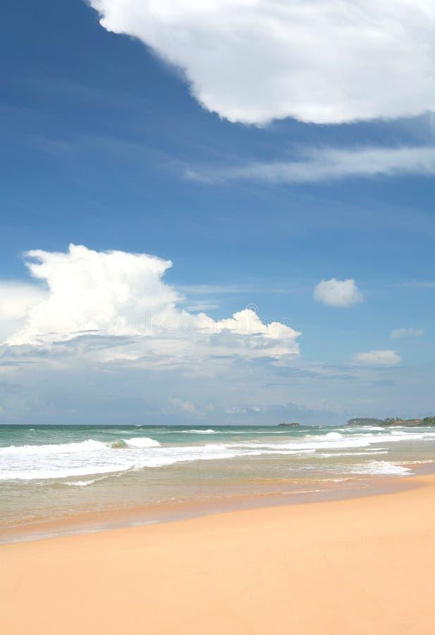 热带的天空 库存图片