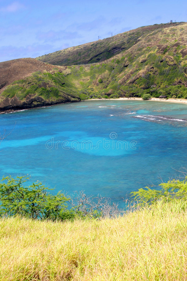 热带的小海湾 库存图片