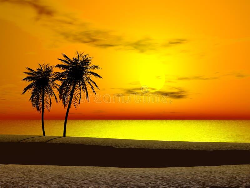 热带的日出