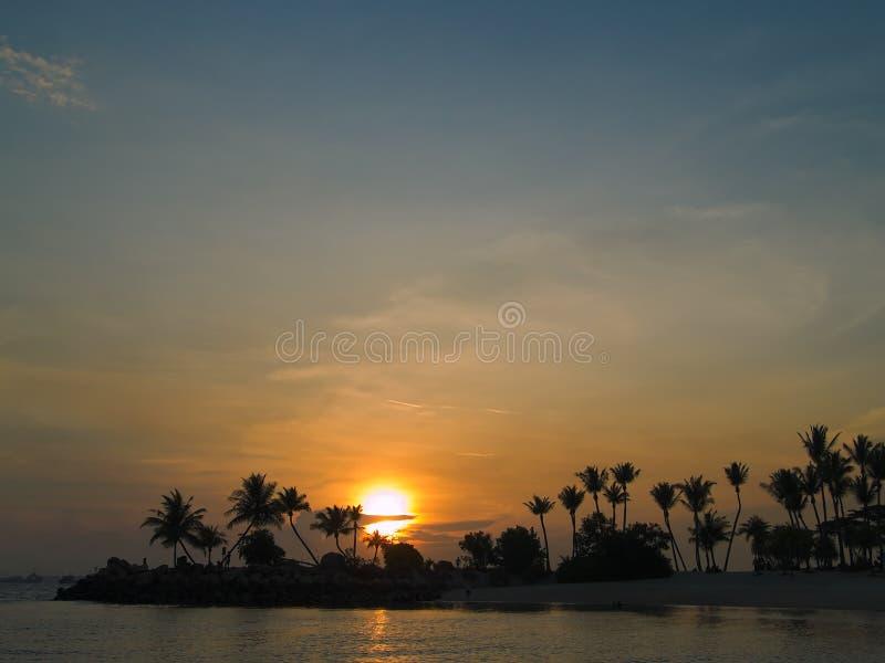 热带的日落 图库摄影