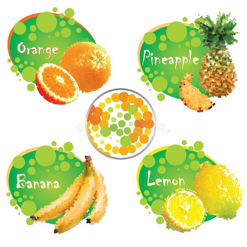 热带的果子 向量例证