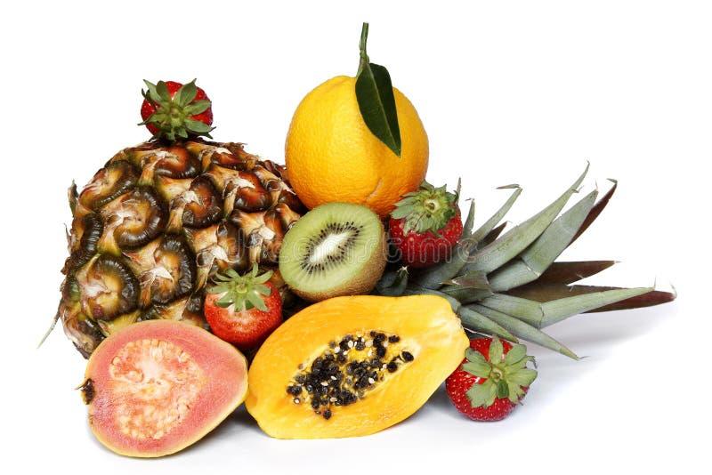 热带的果子 图库摄影