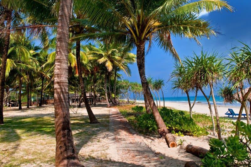 热带的海滩 库存照片