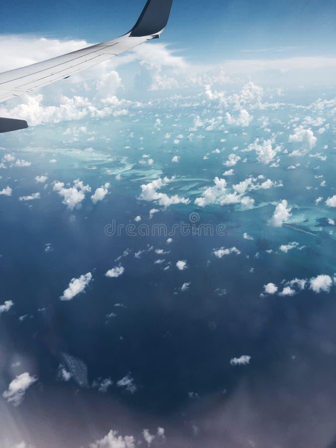 热带看法 免版税库存图片