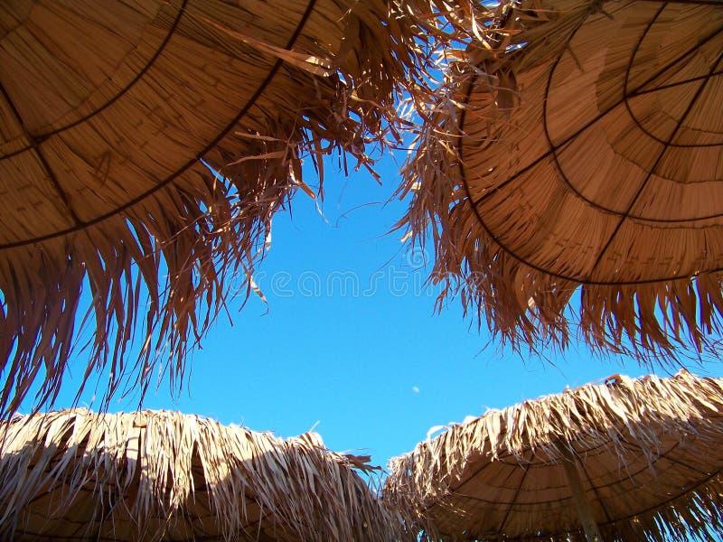 热带秸杆沙滩伞 免版税图库摄影