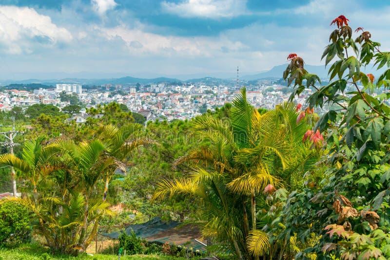 热带绿色棕榈和老城市全景在越南 免版税图库摄影