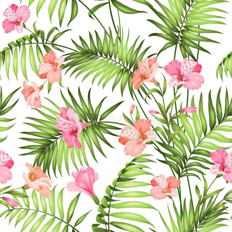 热带美丽的花 皇族释放例证
