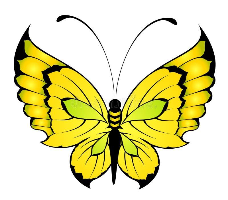 热带美丽的蝴蝶 皇族释放例证