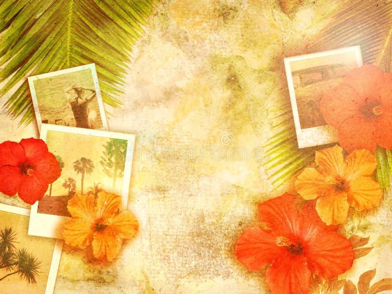 热带背景 图库摄影