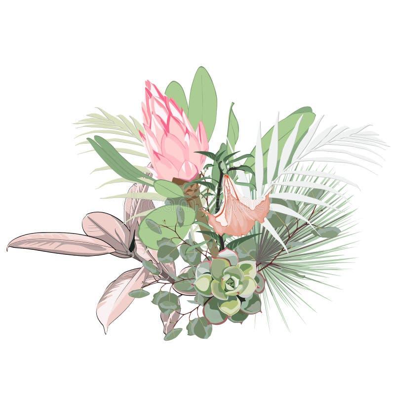 热带花、棕榈叶、密林叶子、多汁和桃红色普罗梯亚木花和百合 库存例证