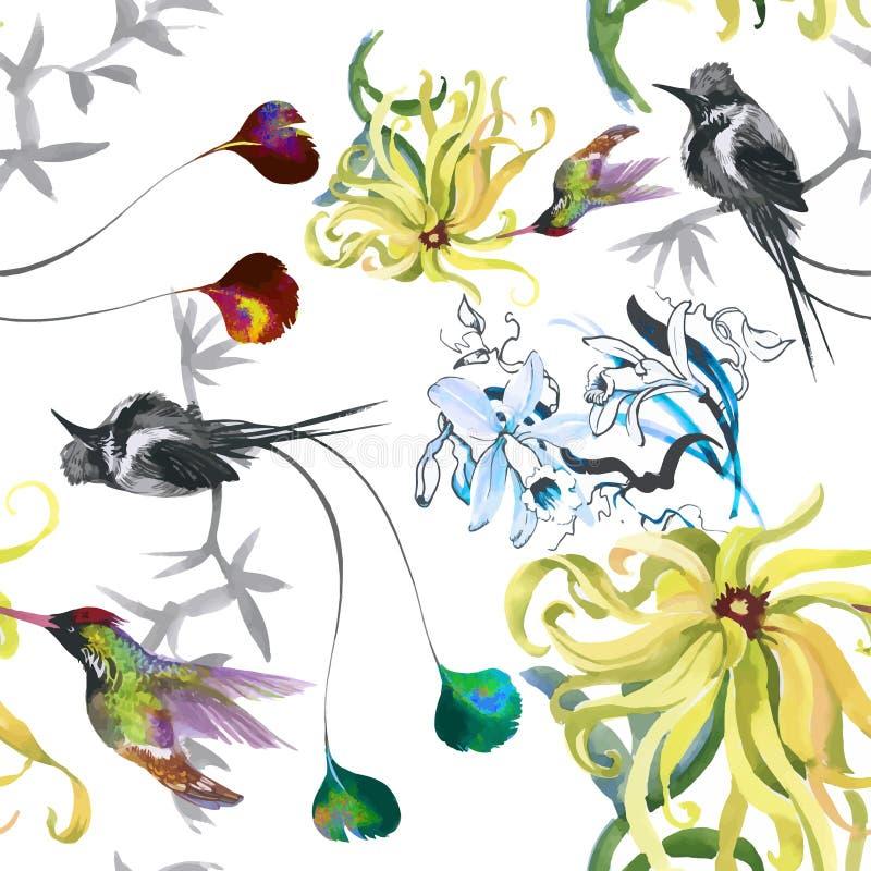 热带花卉与colibris和花的水彩无缝的样式 多孔黏土更正高绘画photoshop非常质量扫描水彩 皇族释放例证
