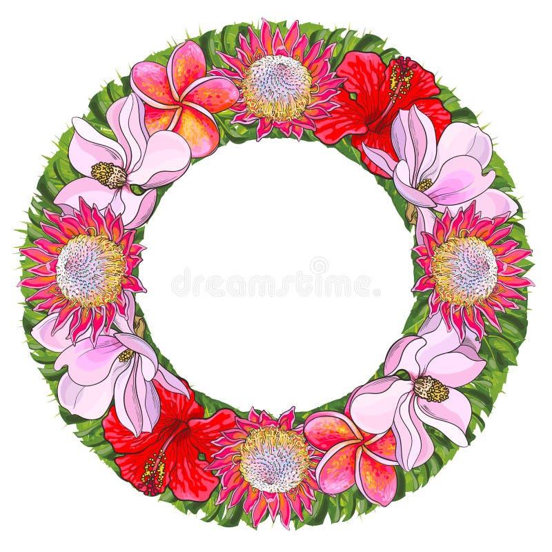 热带花和棕榈叶在花卉构成以在白色背景隔绝的圈子的形式 库存例证