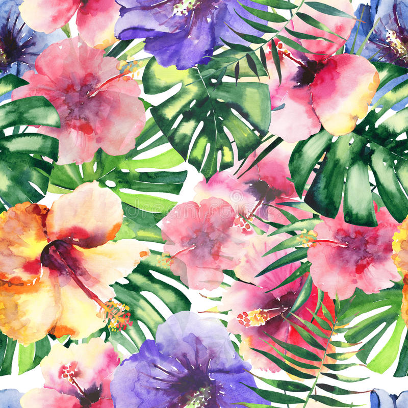 热带花木槿和棕榈的美好的明亮的可爱的五颜六色的热带夏威夷花卉草本夏天样式离开waterc 图库摄影