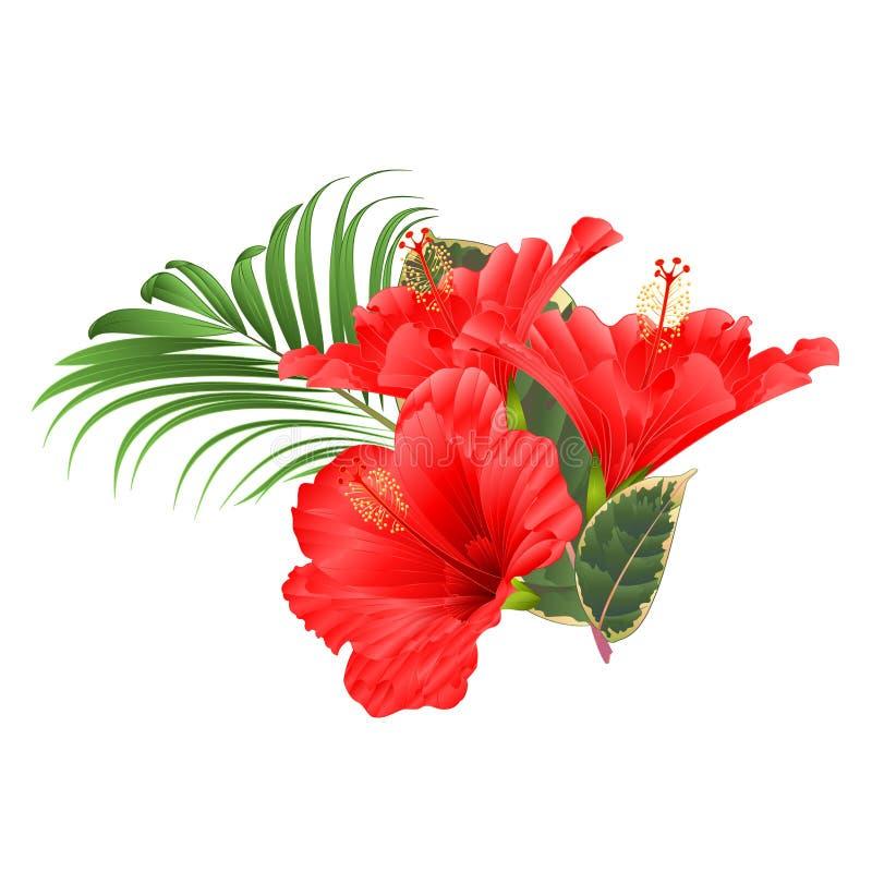 热带花植物布置,与在编辑可能白色背景葡萄酒的传染媒介的红色木槿和棕榈榕属 库存例证