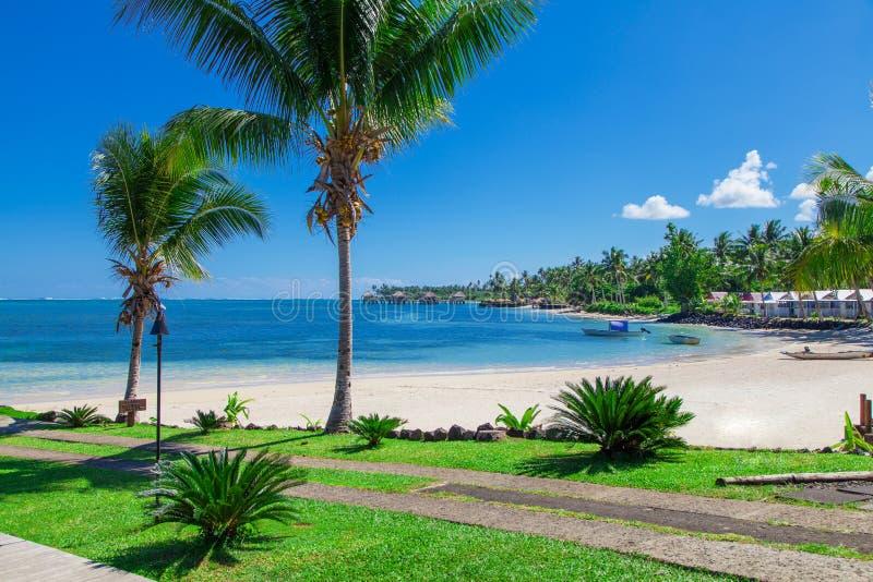热带萨摩亚 库存图片