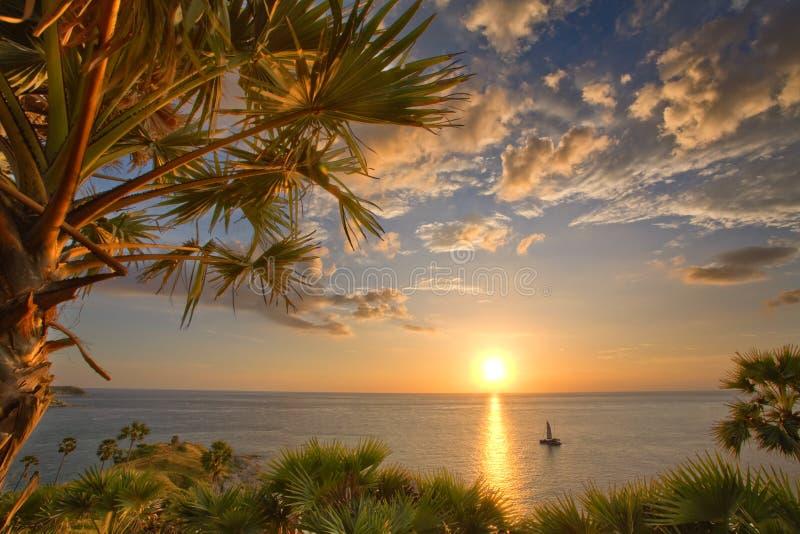热带视图 库存照片