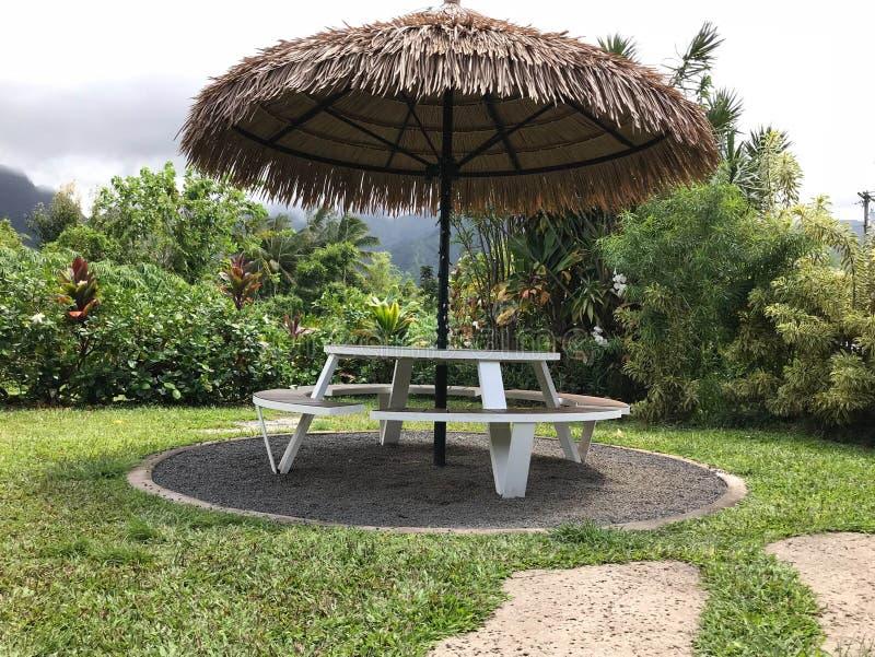 热带野餐桌,考艾岛,夏威夷,美国 免版税库存图片