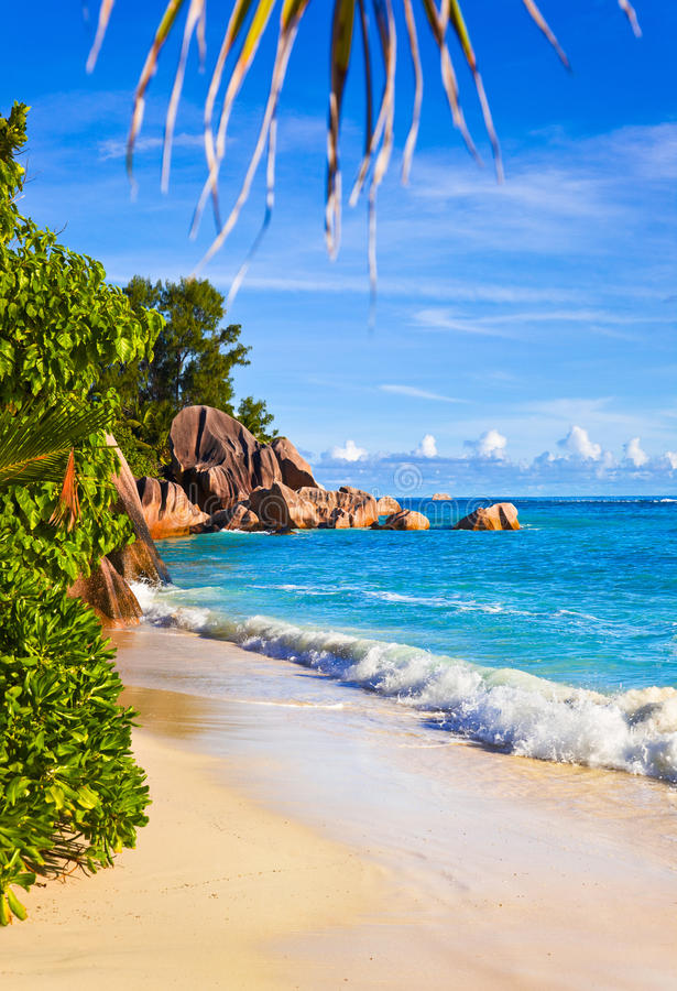 Download 热带银海滩d塞舌尔群岛的来源 库存照片. 图片 包括有 密林, 叶子, 手段, 云彩, 户外, 海岸线, 沙子 - 22357612