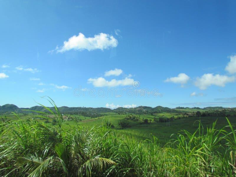 热带风景在菲律宾 库存图片