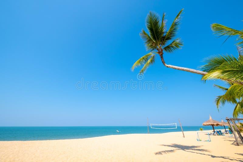 热带风景海视图和棕榈树美好的平静的风景在沙滩 免版税库存照片