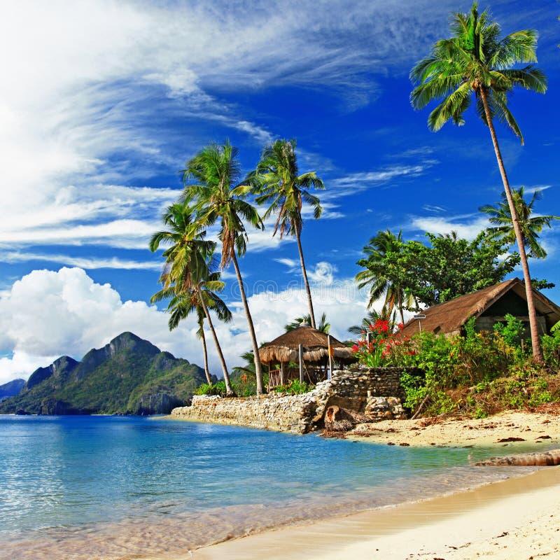 热带风景 库存照片