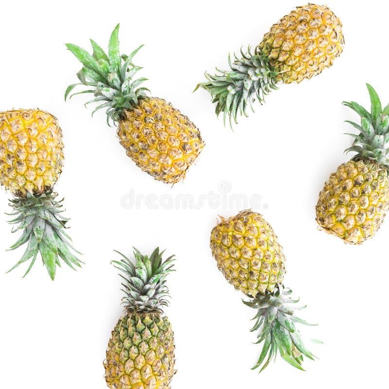 热带食物概念用菠萝在白色背景结果实 平的位置,顶视图 免版税库存照片