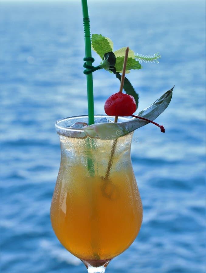 热带饮料用果子和蓝色海洋背景 免版税图库摄影