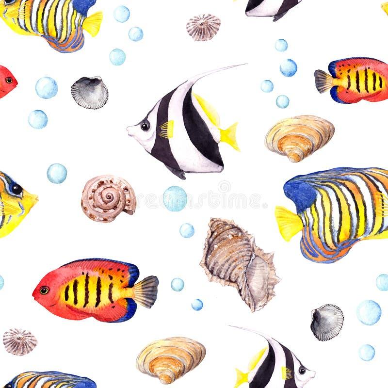 热带鱼和贝壳 重复无缝的样式 水彩 库存例证