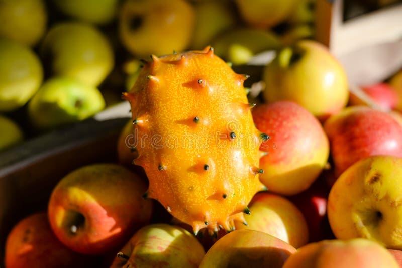 热带水果Kiwano或与其他的有角的瓜 免版税图库摄影