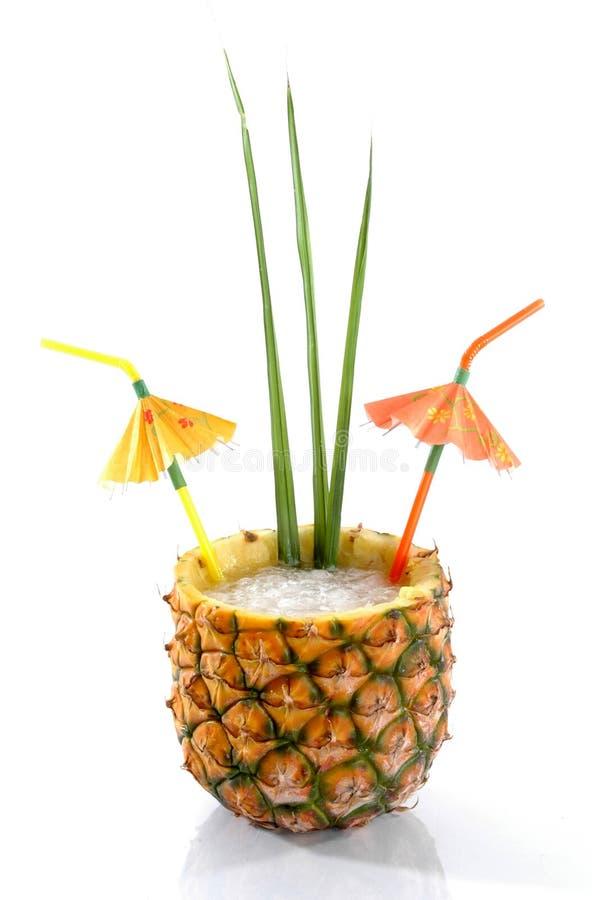 热带1个饮料的菠萝 免版税库存图片