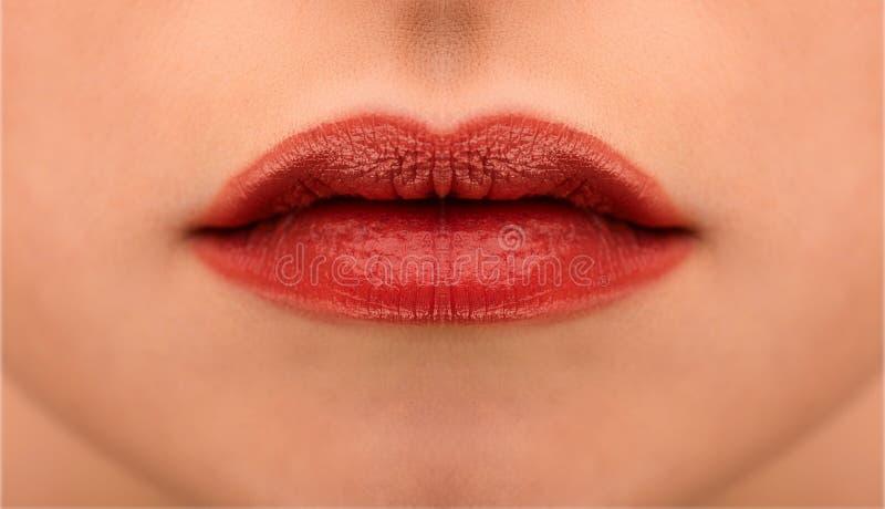 热情的红色嘴唇宏指令摄影 免版税库存图片