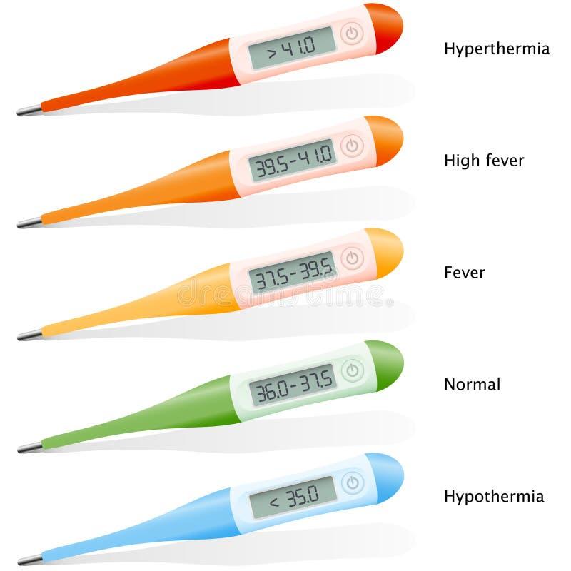 热病数字体温计 向量例证