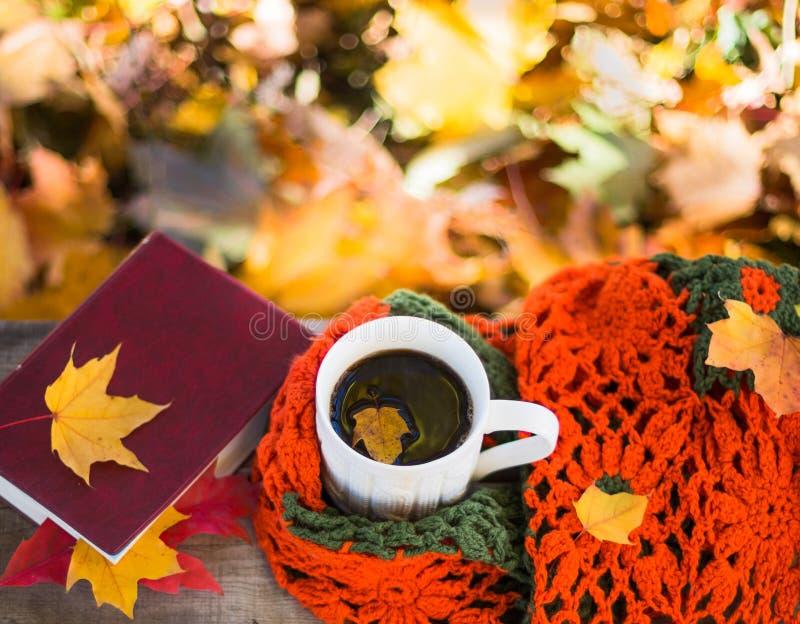 热的咖啡和红色书与秋叶在木背景-季节性放松概念 库存照片