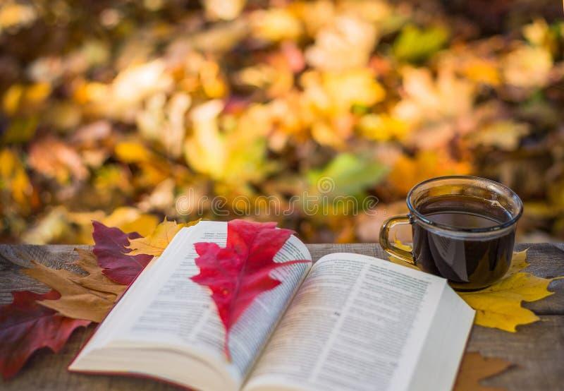 热的咖啡和红色书与秋叶在木背景 免版税库存图片