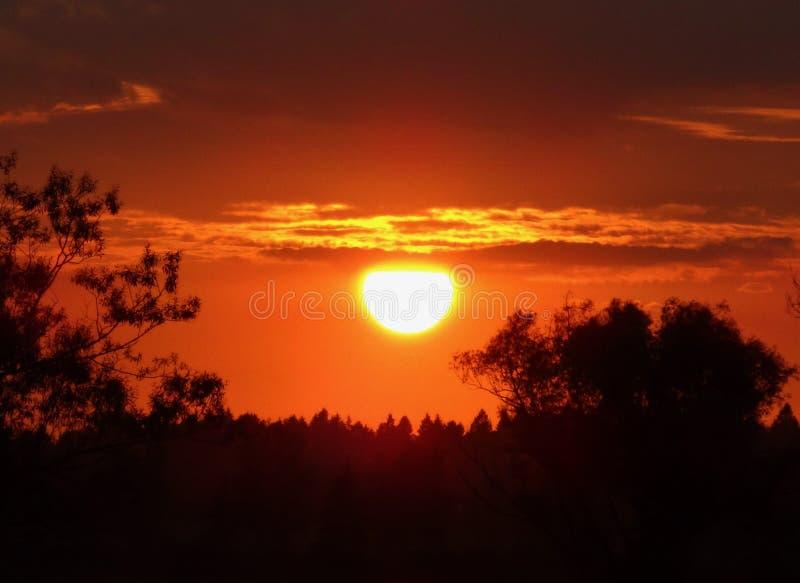 热的橙色日落 并且它不是非洲 库存图片