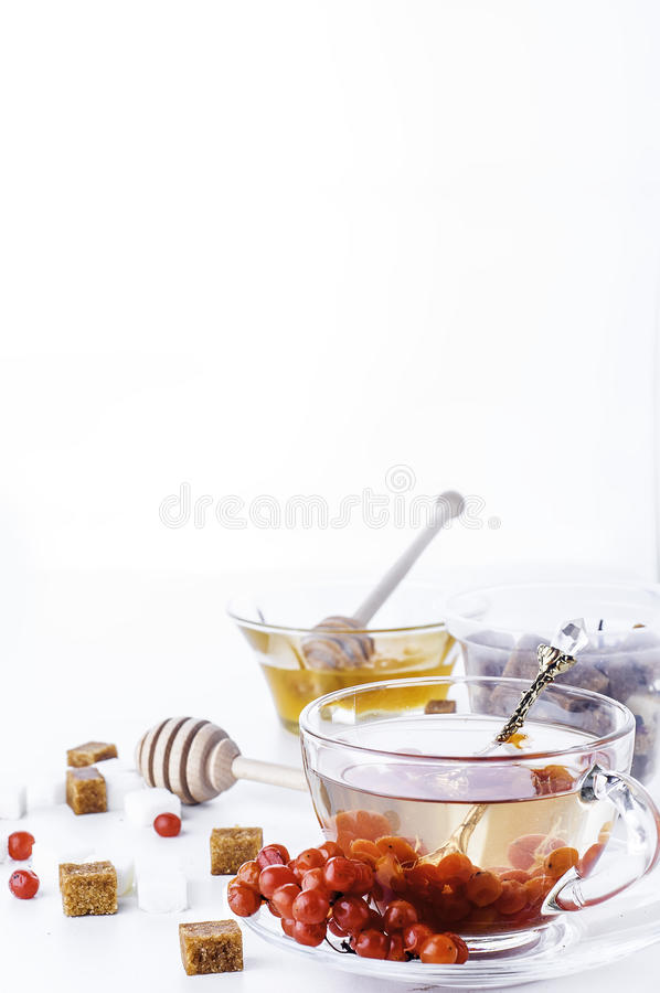 热的清凉茶用蜂蜜和荚莲属的植物, 免版税库存照片