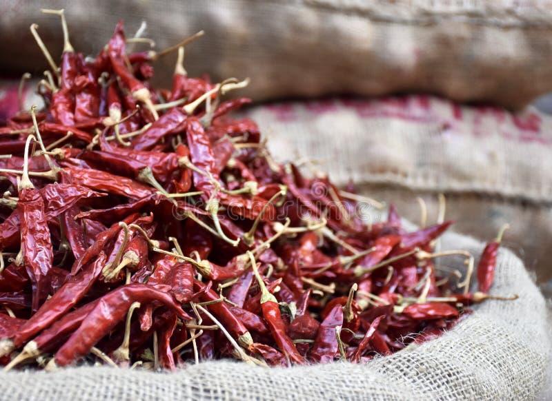 热的红色干胡椒袋子 图库摄影