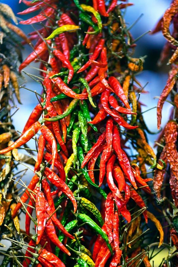 热的红色绿色冷颤的胡椒 免版税图库摄影
