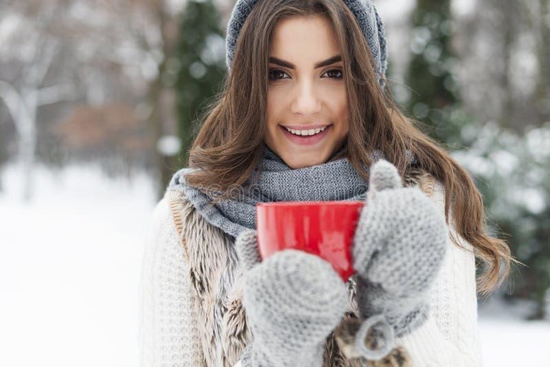 热的茶在冬天 免版税库存照片