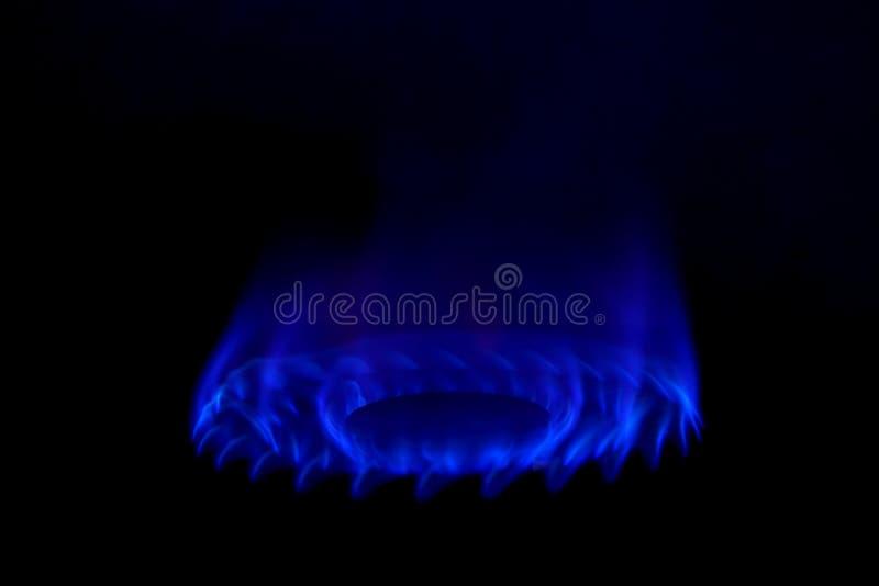热的蓝色气体燃烧的火 库存照片