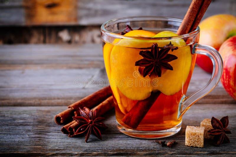 热的被仔细考虑的苹果汁饮料用肉桂条、丁香和茴香 免版税库存图片