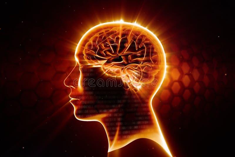 热的头脑 向量例证