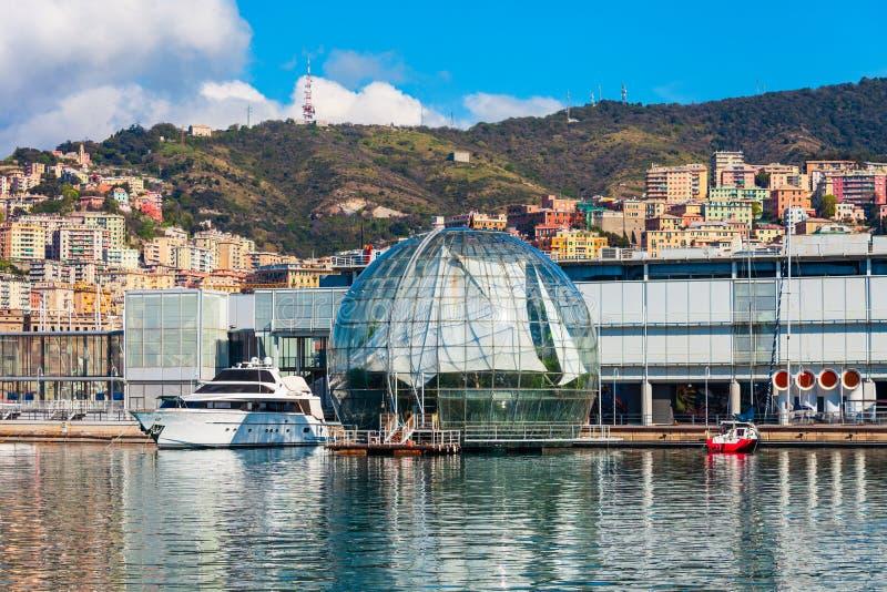 热那亚水族馆,最大在意大利 免版税图库摄影